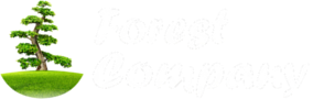 FOREST COMPANY